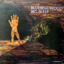 Big Sleep - Bluebell Wood