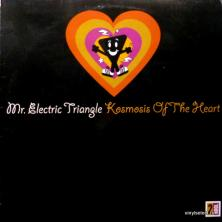 Mr. Electric Triangle - Kosmosis Of The Heart