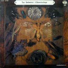 Joy Unlimited - Schmetterlinge