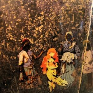 Paavoharju - Laulu Laakson Kukista