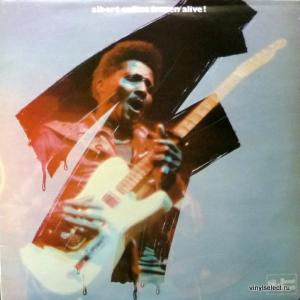 Albert Collins - Frozen Alive!