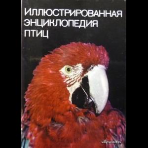 Ян Ганзак - Иллюстрированная Энциклопедия Птиц
